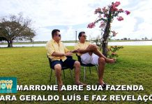sertanejo marrone